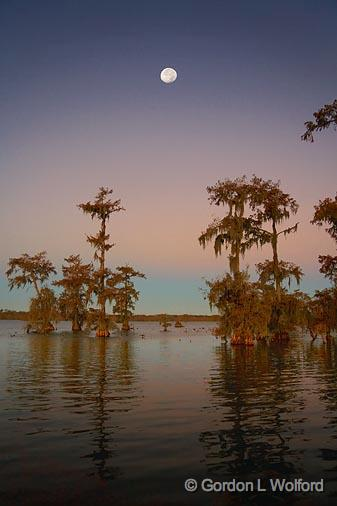 GORDON WOLFORD PHOTOGRAPHY Cajun Country Louisiana Moon Over Lake Martin 25532